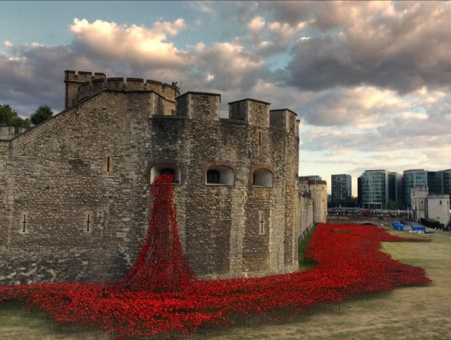 Ceramic-Poppies-in-Tower-of-London1-640x482