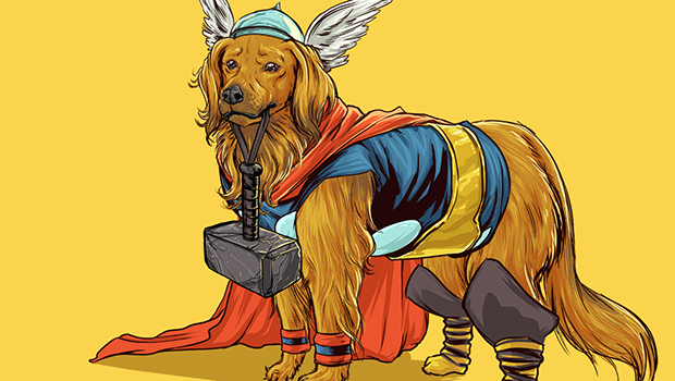 perros-superheroes-josh-lynch-img-4